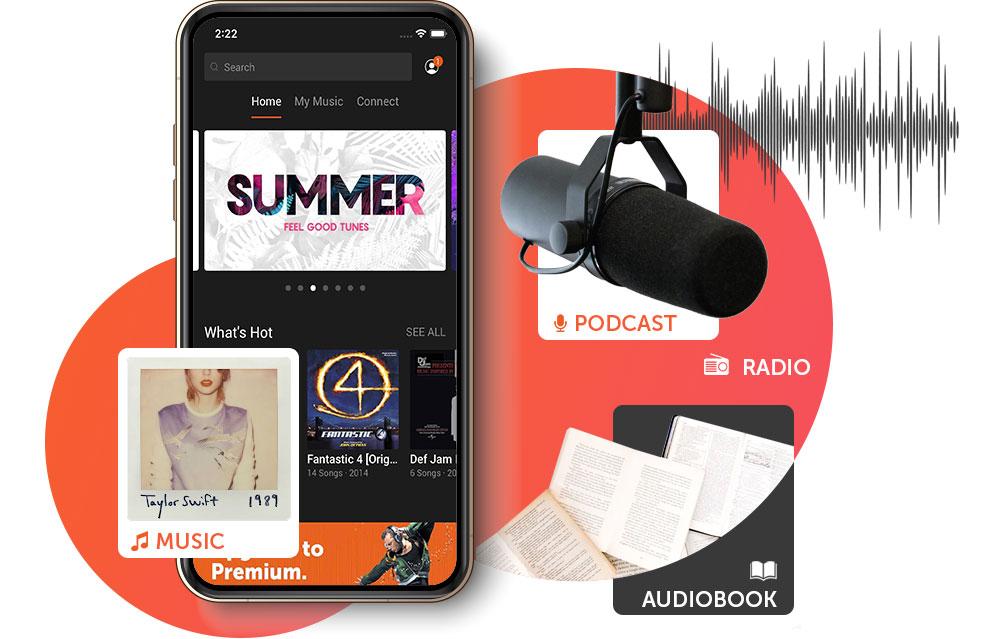 audio-music-steaming-technology-whitelabel